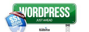 icona art Come impostare il certificato SSL di Cloudflare con WordPress